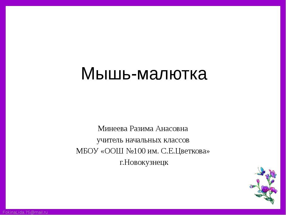 Мышь-малютка Минеева Разима Анасовна учитель начальных классов МБОУ «ООШ №100...