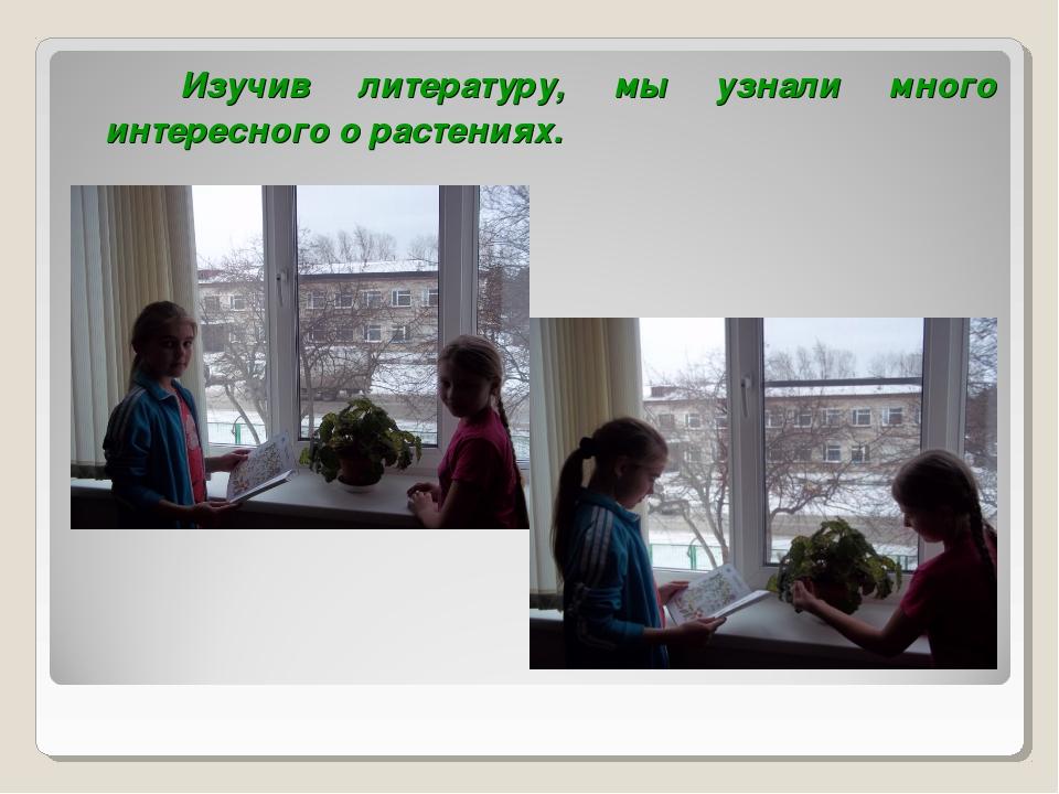 Изучив литературу, мы узнали много интересного о растениях.