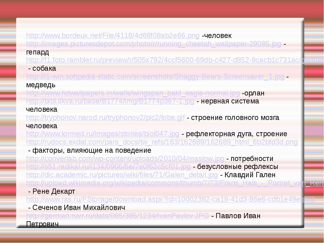 http://www.bordeux.net/File/4118/4d68f08ab2e66.png -человек http://images.pic...