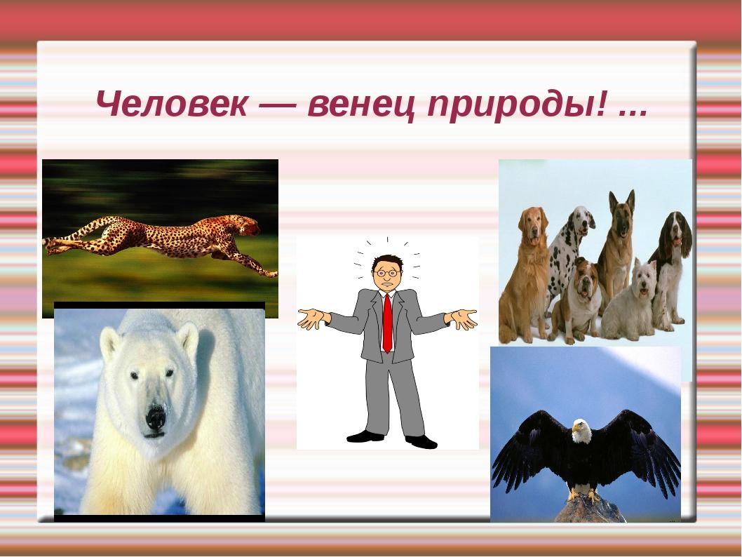 Человек — венец природы! ...
