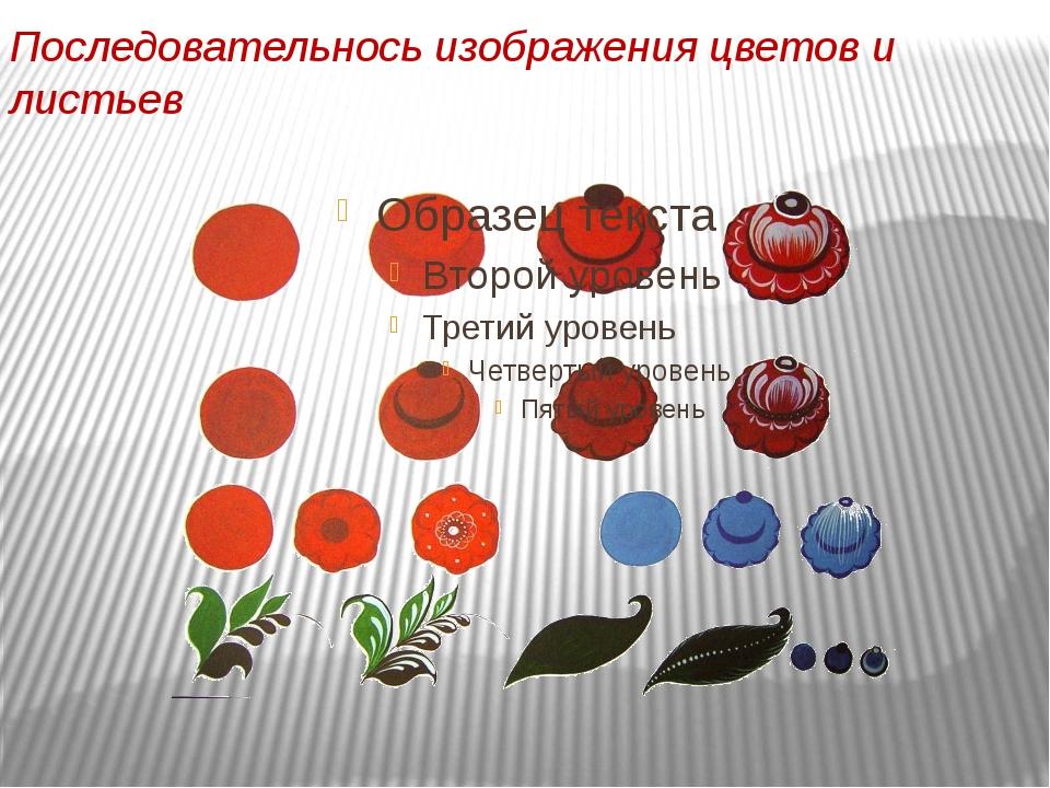Последовательнось изображения цветов и листьев