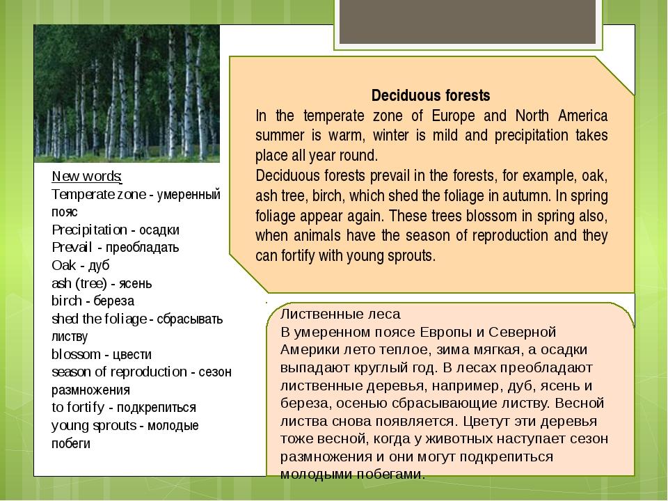 New words: Temperate zone - умеренный пояс Precipitation - осадки Prevail - п...