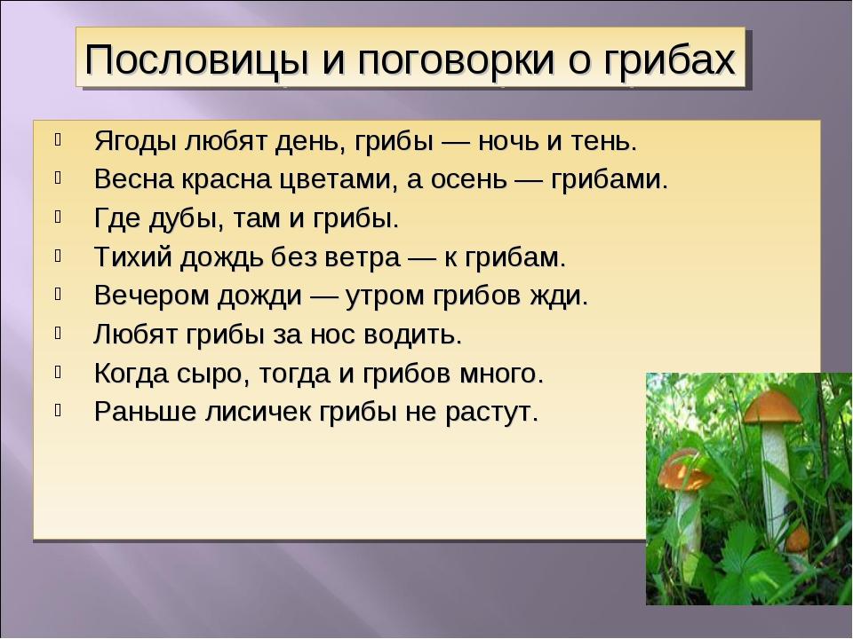 Ягоды любят день, грибы — ночь и тень. Весна красна цветами, а осень — грибам...