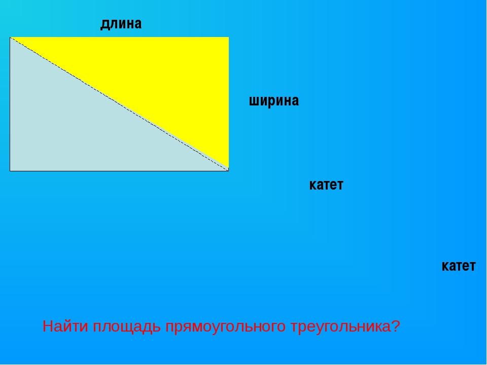 длина ширина катет катет Найти площадь прямоугольного треугольника?