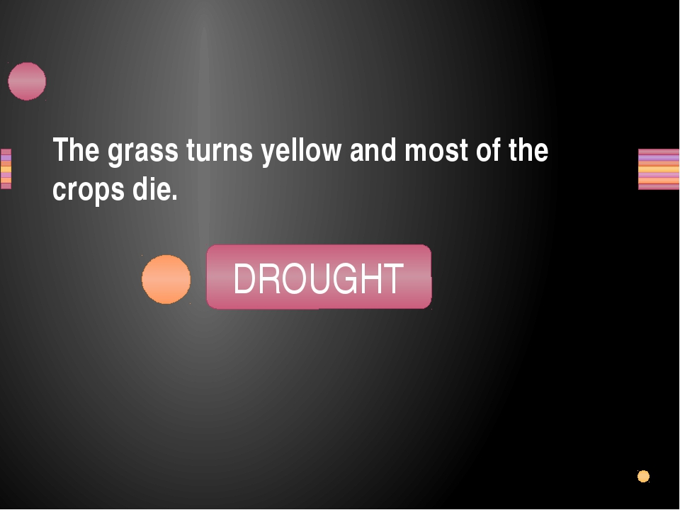 The grass turns yellow and most of the crops die. GRODUHT DROUGHT Заголовок р
