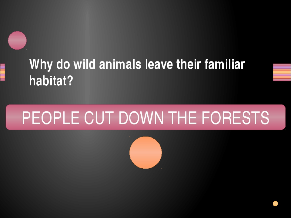 Why do wild animals leave their familiar habitat? OPLEPE TUC WOND THE FESORTS...