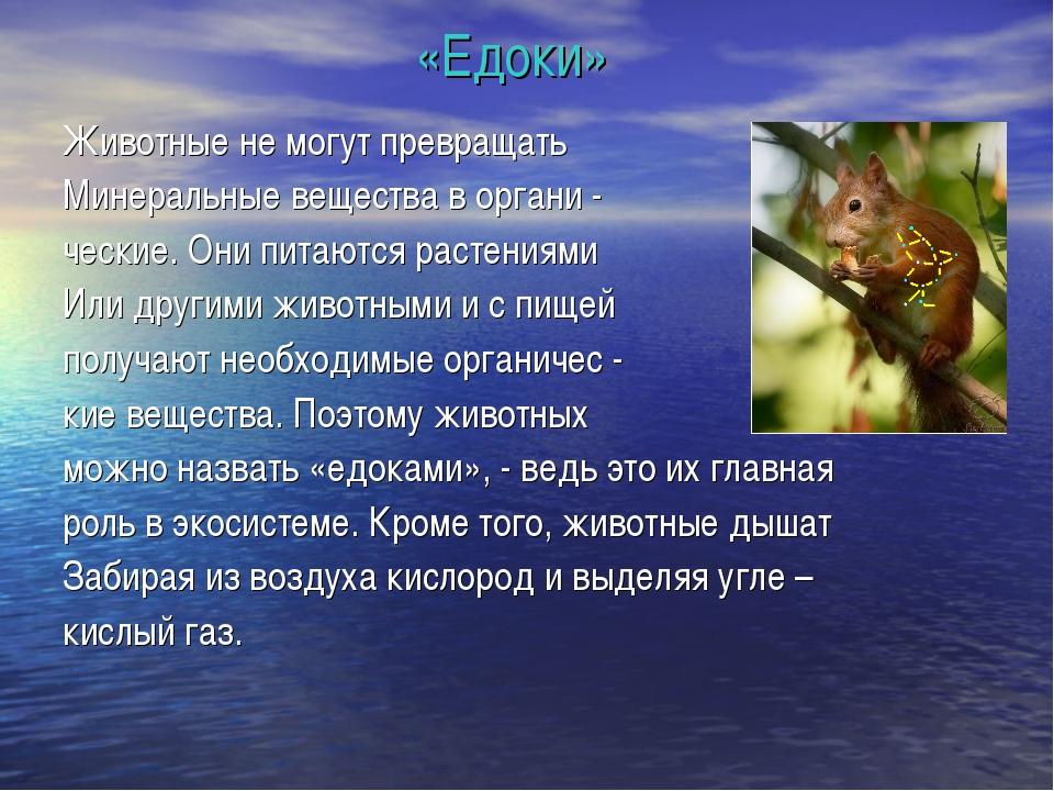 «Едоки» Животные не могут превращать Минеральные вещества в органи - ческие....