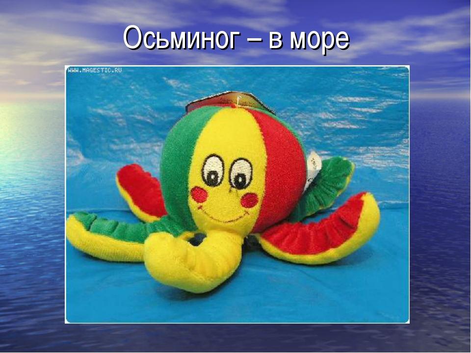 Осьминог – в море
