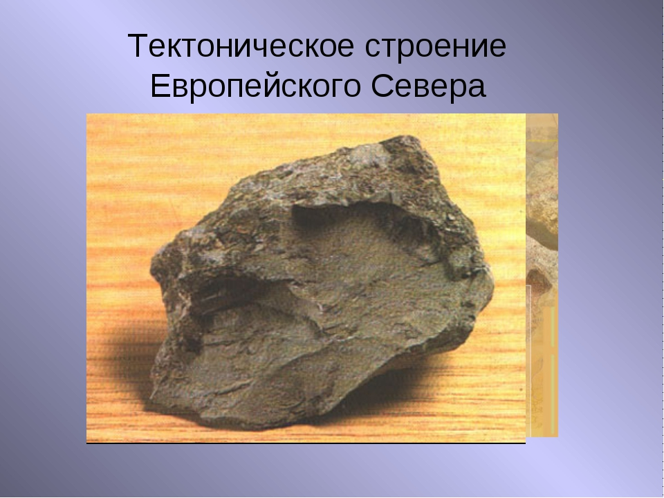Тектоническое строение Европейского Севера Выступ кристаллического фундамента...