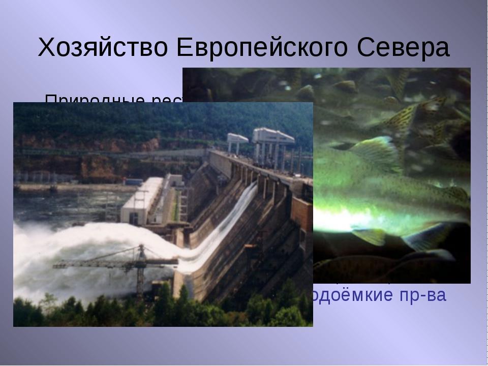 Хозяйство Европейского Севера Природные ресурсы Нефть, газ, уголь Руды металл...