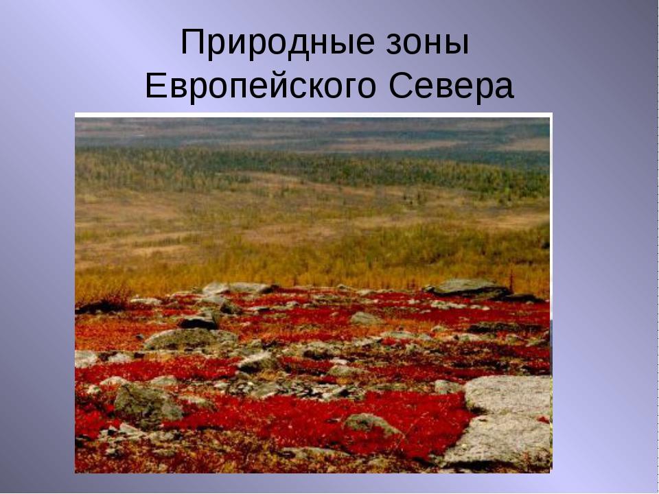 Природные зоны Европейского Севера