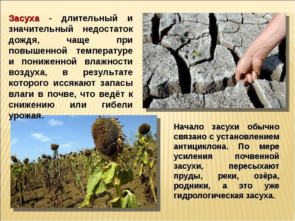 Засуха - длительный и значительный недостаток дождя, чаще при повышенной темп...