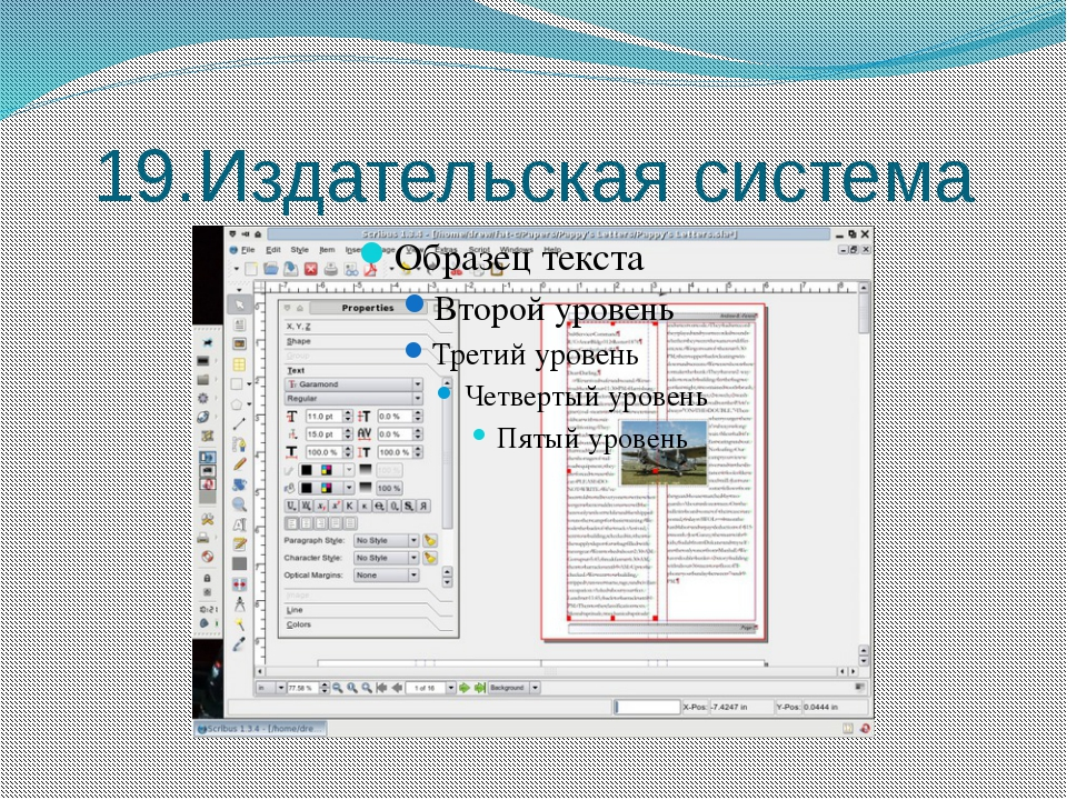 19.Издательская система