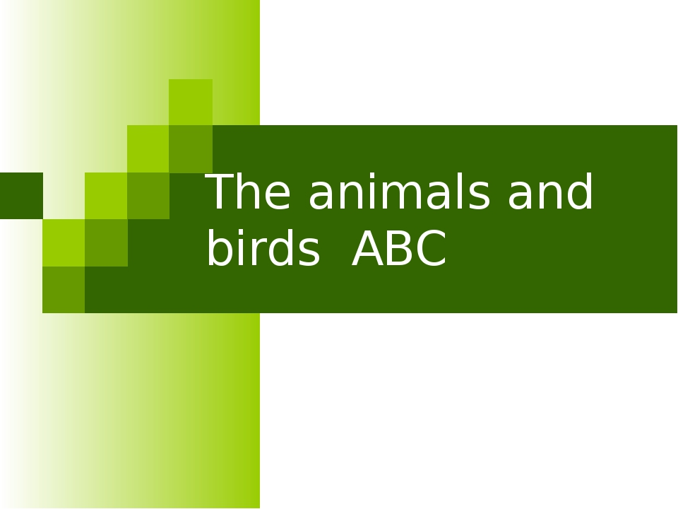 The animals and birds ABC