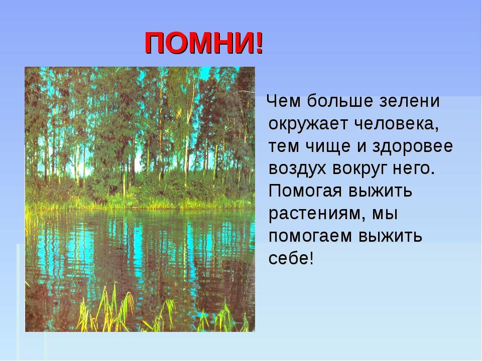 ПОМНИ! Чем больше зелени окружает человека, тем чище и здоровее воздух вокру...