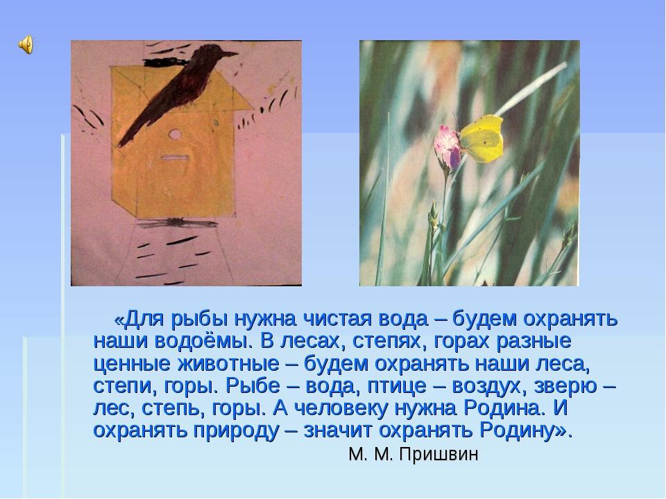 «Для рыбы нужна чистая вода – будем охранять наши водоёмы. В лесах, степях,...