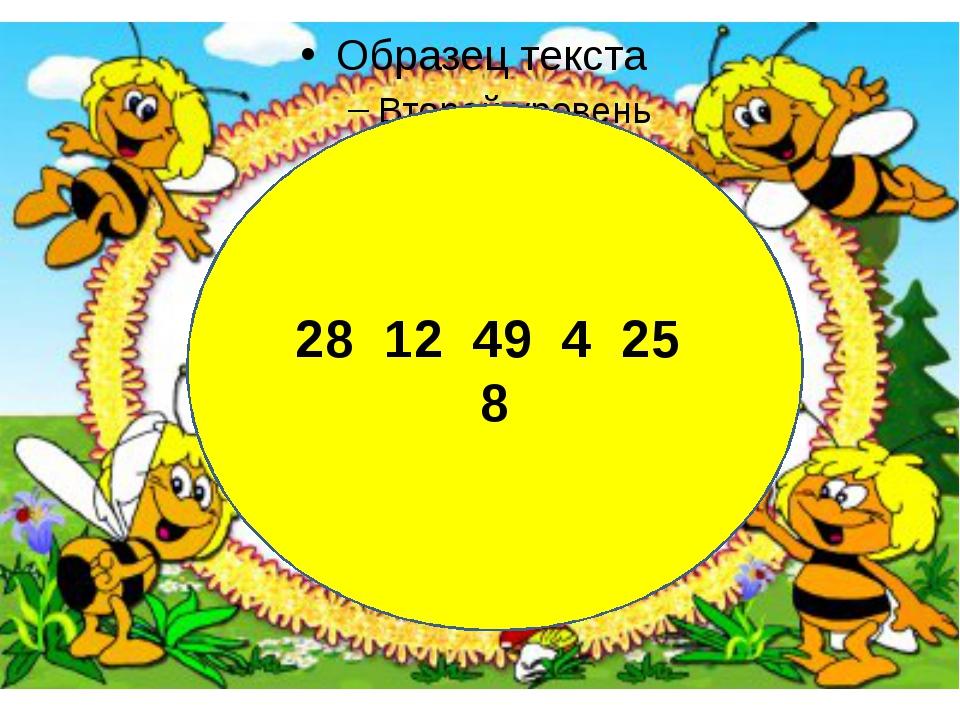 28 12 49 4 25 8