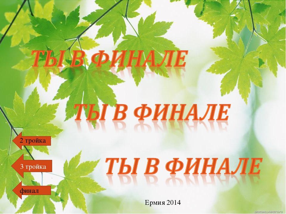 финал 2 тройка 3 тройка Ермия 2014