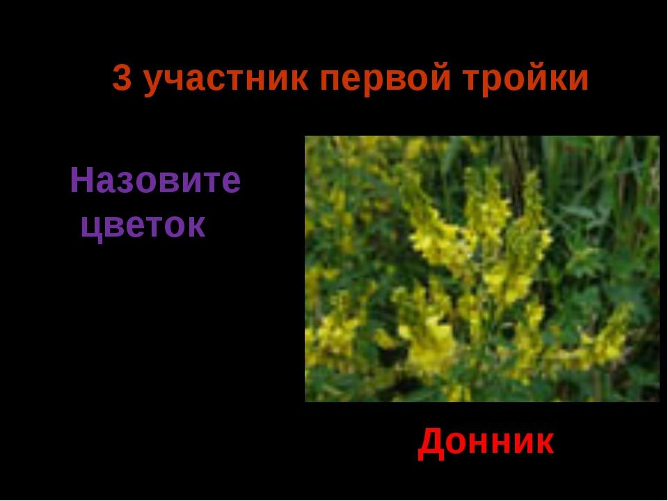 3 участник первой тройки Донник Назовите цветок Ермия 2014