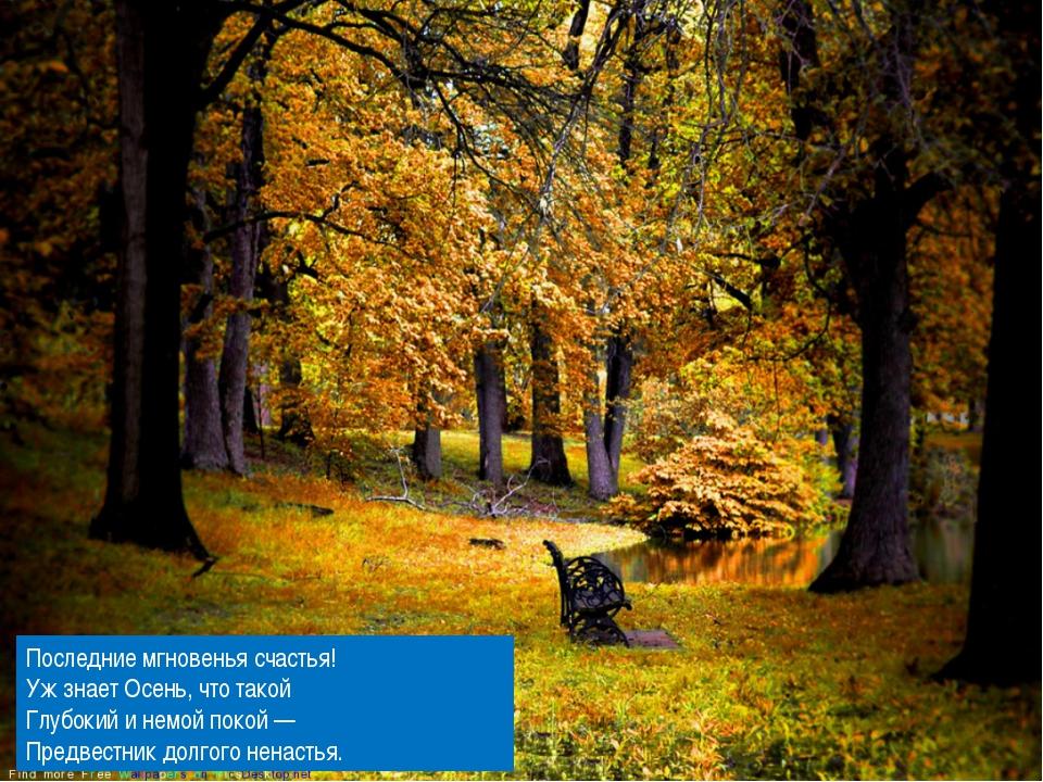 Последние мгновенья счастья! Уж знает Осень, что такой Глубокий и немой поко...