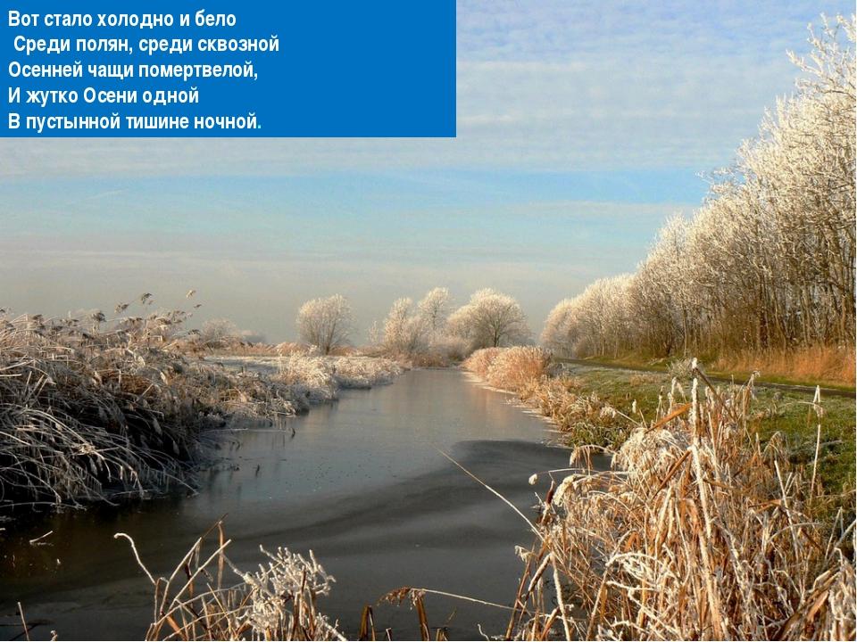 Вот стало холодно и бело Среди полян, среди сквозной Осенней чащи помертвело...