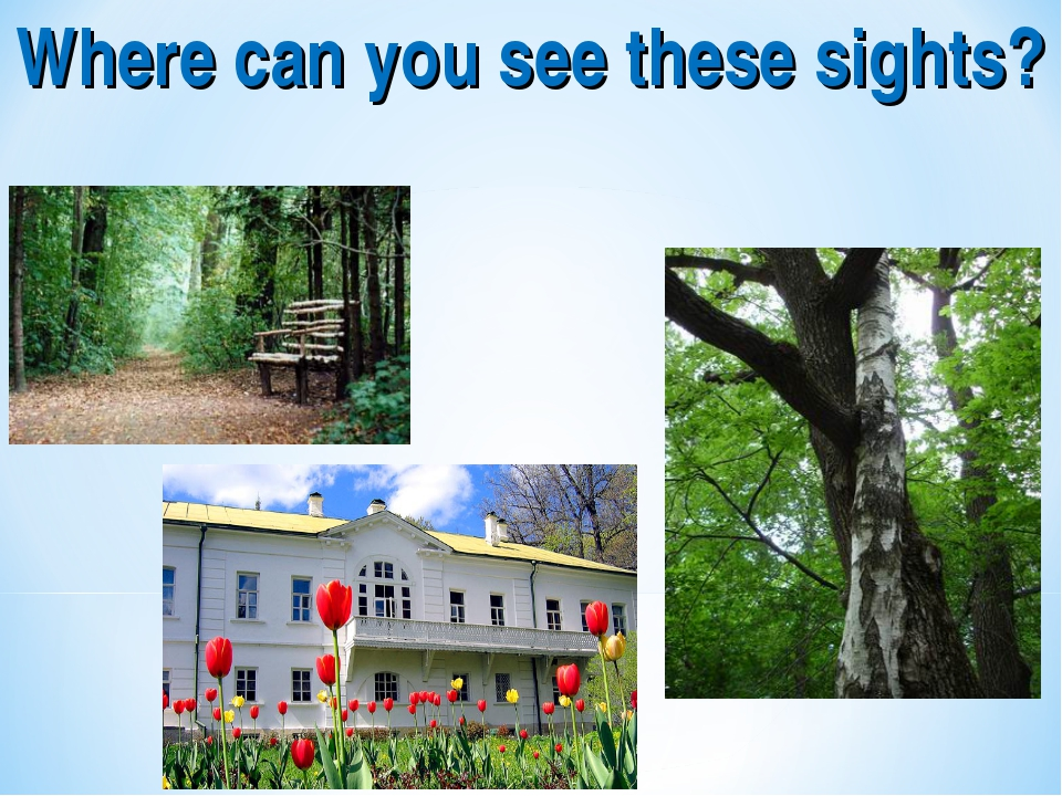 Where can you see these sights?
