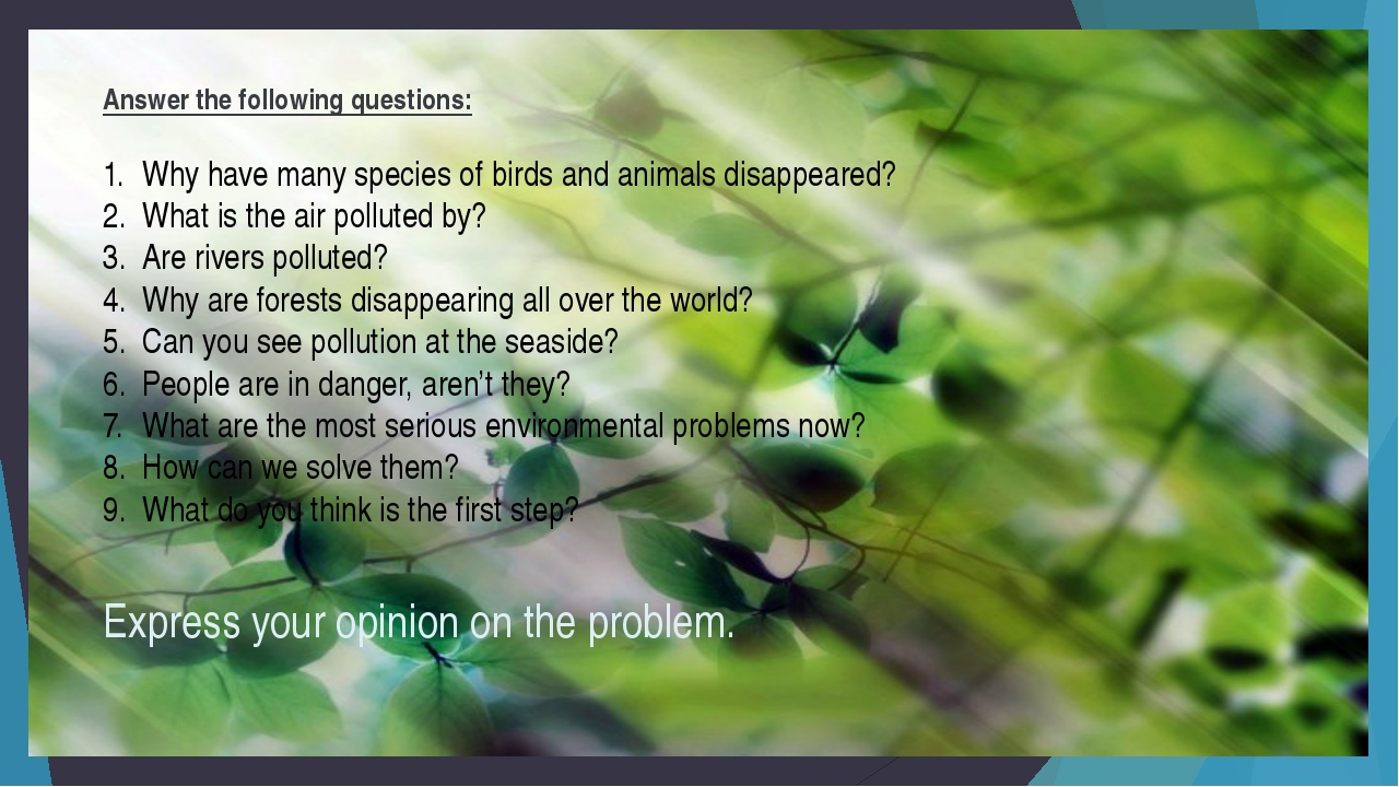 Answer the following questions: Why have many species of birds and animals di...