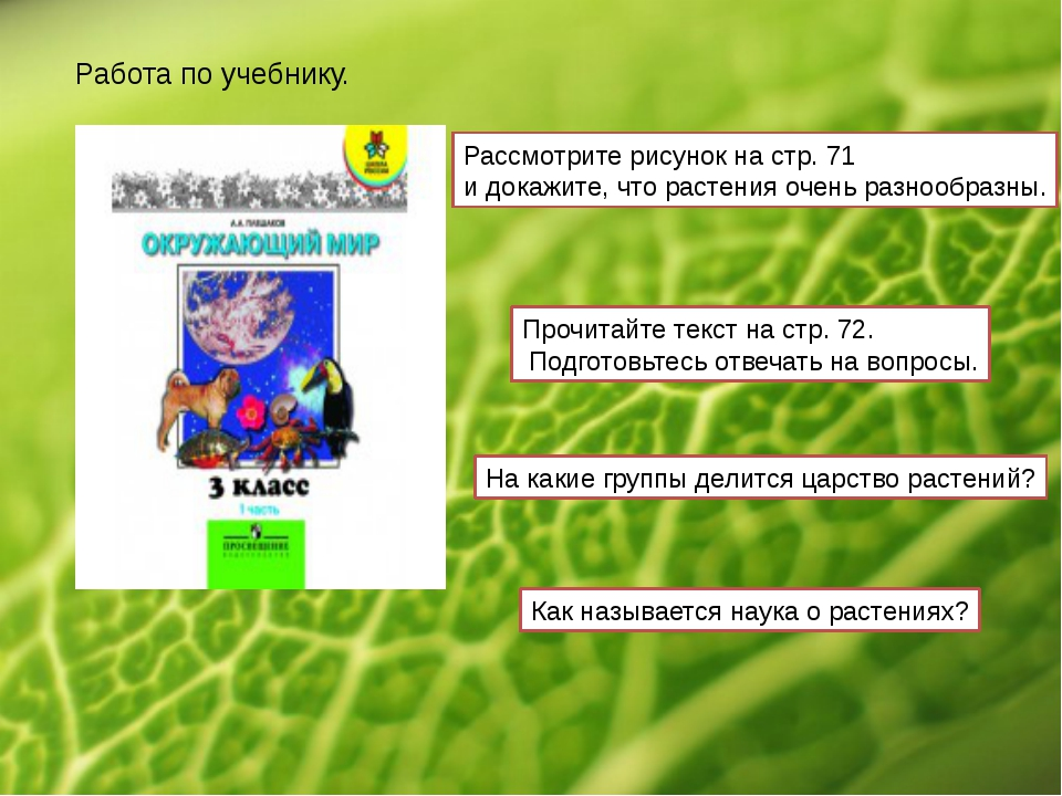 Работа по учебнику. Рассмотрите рисунок на стр. 71 и докажите, что растения о...
