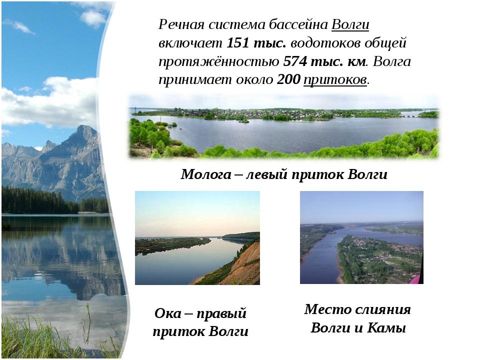 Речная система бассейна Волги включает 151 тыс. водотоковобщей протяжённость...