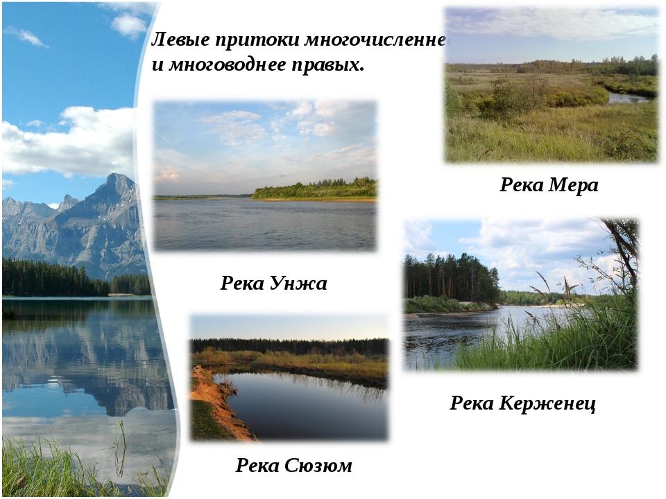 Левые притоки многочисленнее и многоводнее правых. Река Керженец Река Мера Ре...