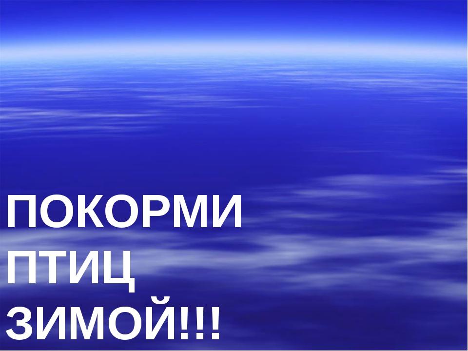 ПОКОРМИ ПТИЦ ЗИМОЙ!!!