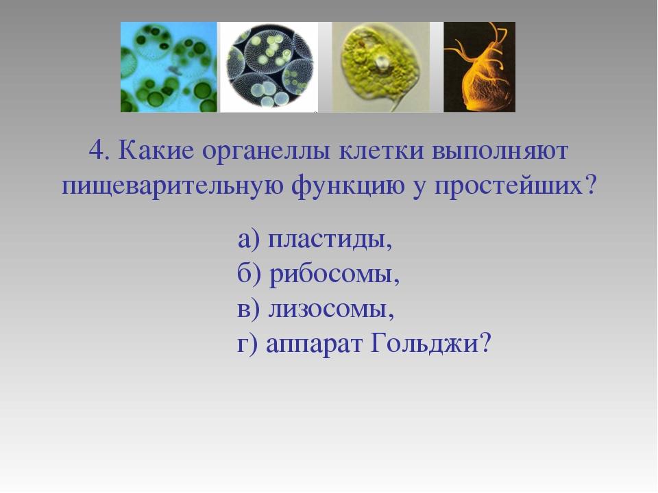 4. Какие органеллы клетки выполняют пищеварительную функцию у простейших? а)...