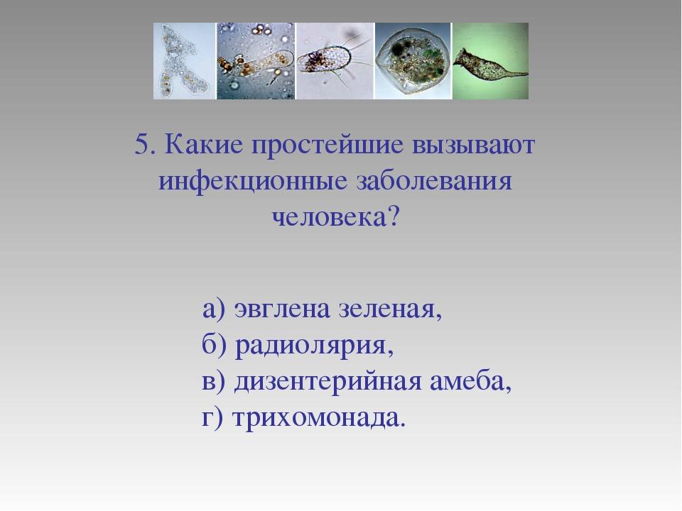 5. Какие простейшие вызывают инфекционные заболевания человека? а) эвглена зе...