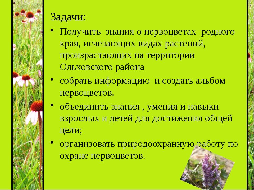Задачи: Получить знания о первоцветах родного края, исчезающих видах растений...