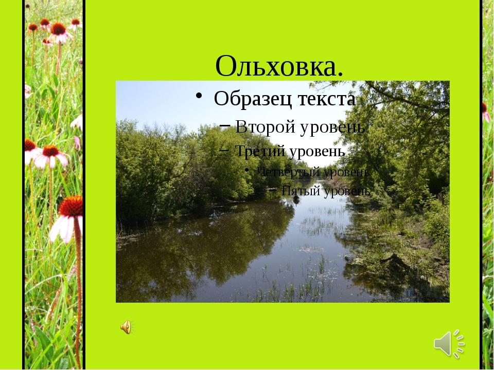 Ольховка.