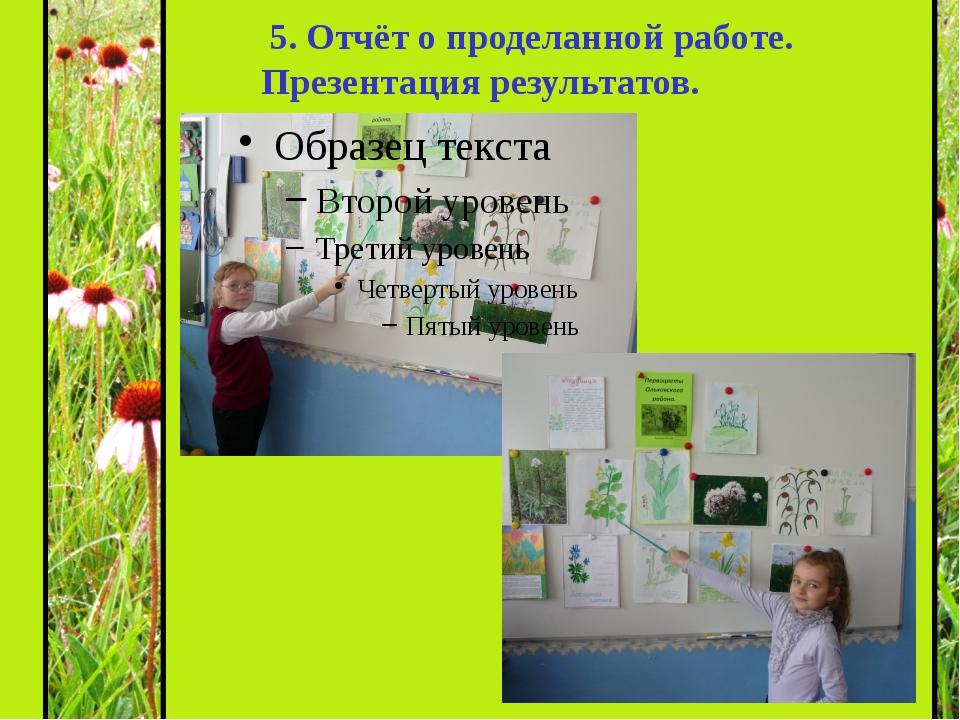 5. Отчёт о проделанной работе. Презентация результатов.