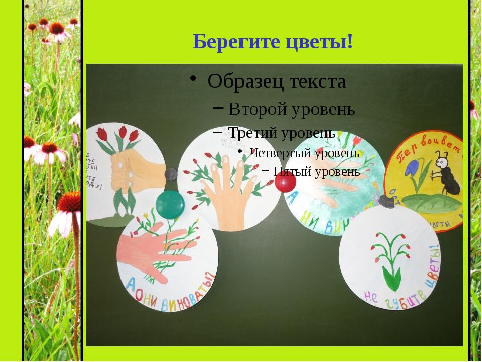 Берегите цветы!
