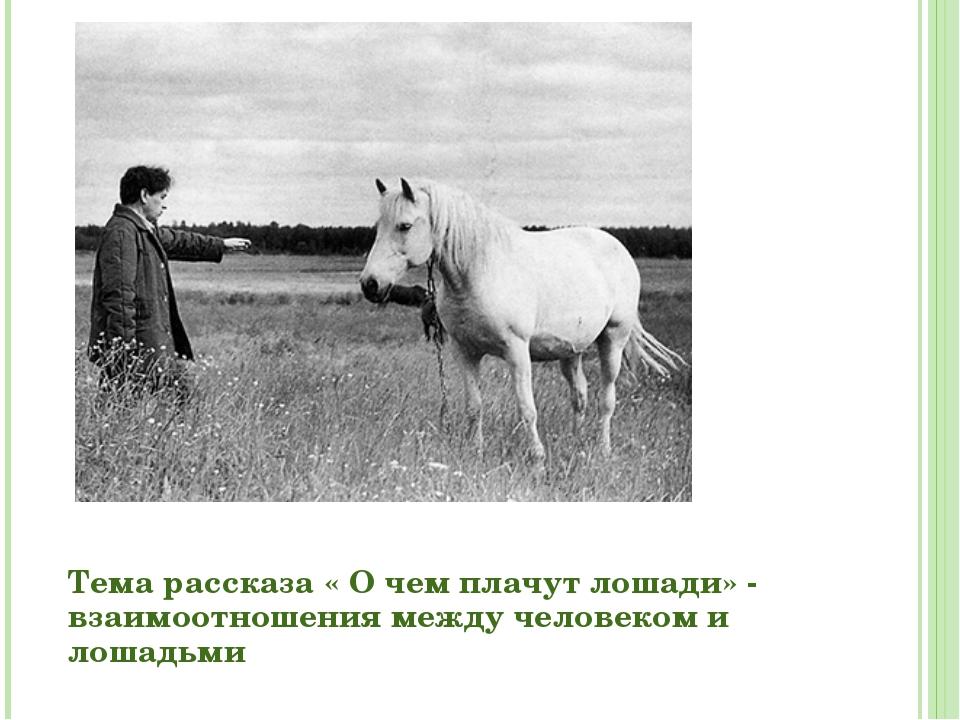 Картинки абрамова о чем плачут лошади