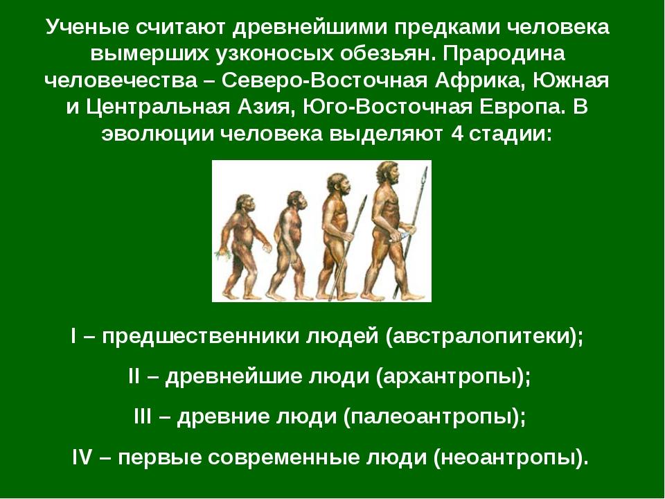 Ученые считают древнейшими предками человека вымерших узконосых обезьян. Прар...