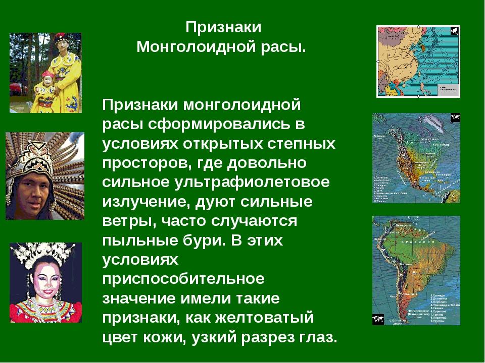 Признаки Монголоидной расы. Признаки монголоидной расы сформировались в усло...