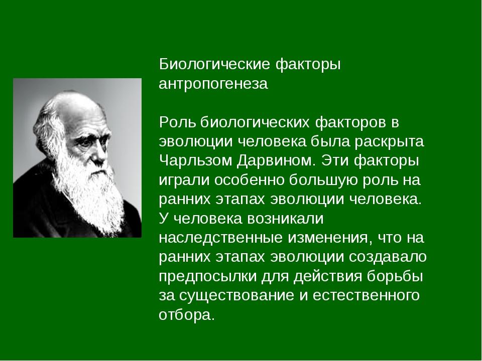 Биологические факторы антропогенеза Роль биологических факторов в эволюции ч...