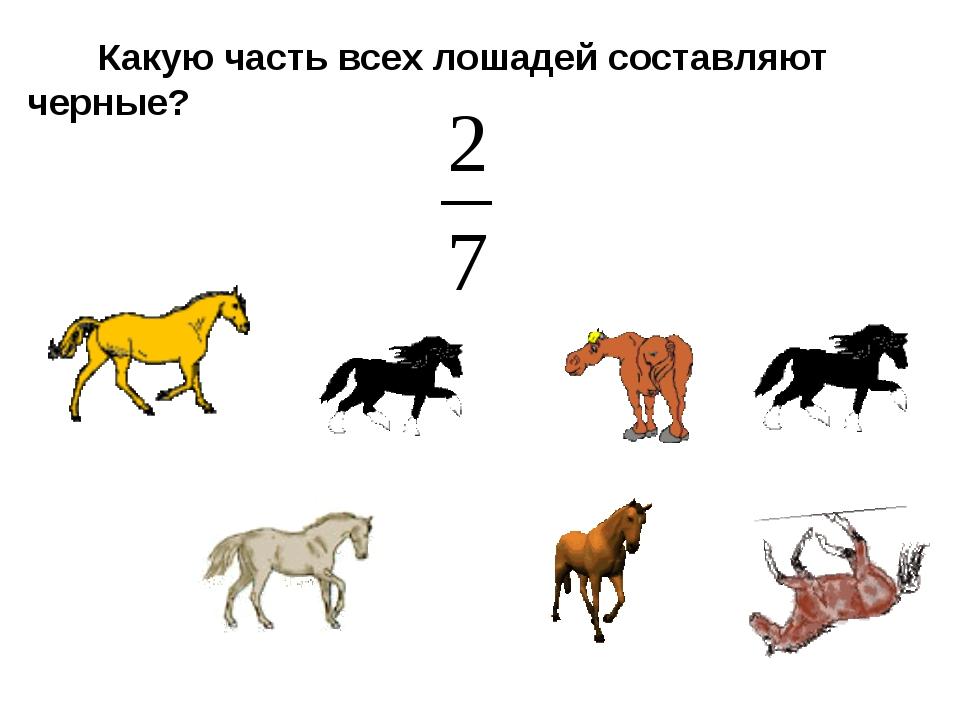 Какую часть всех лошадей составляют черные?