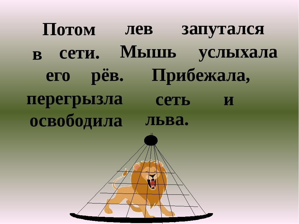 Потом лев запутался в сети. Мышь услыхала его рёв. Прибежала, перегрызла сеть...