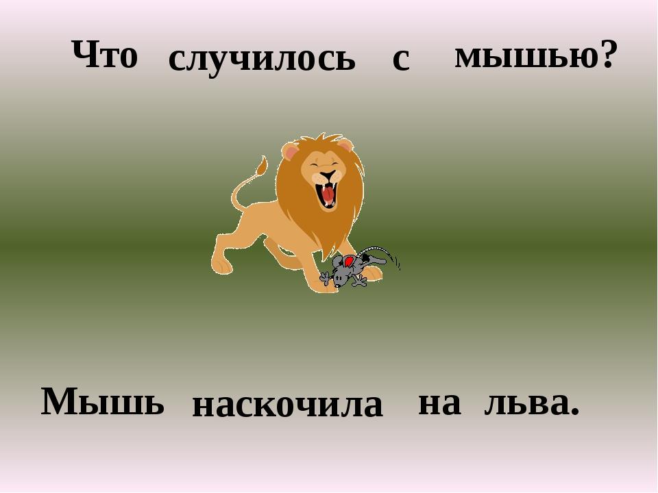 Что случилось с мышью? Мышь наскочила на льва.