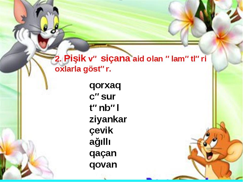 2. Pişik və siçana aid olan əlamətləri oxlarla göstər. qorxaq cəsur tənbəl zi...