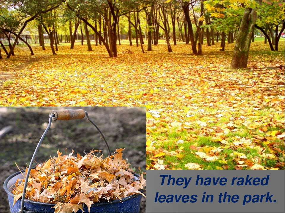 They have raked leaves in the park.