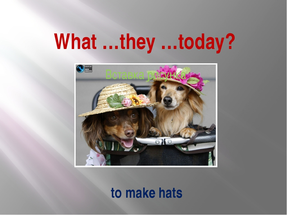 What …they …today? to make hats