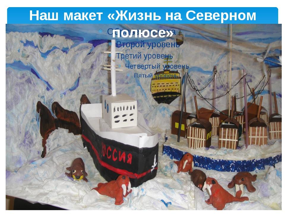 Наш макет «Жизнь на Северном полюсе»