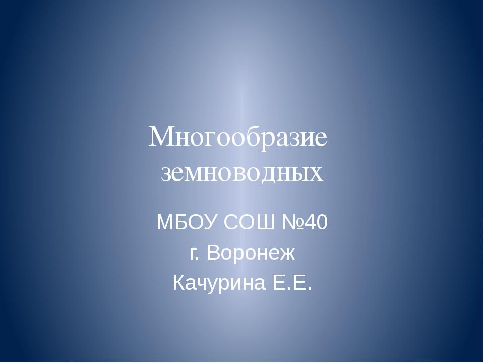 Многообразие земноводных МБОУ СОШ №40 г. Воронеж Качурина Е.Е.