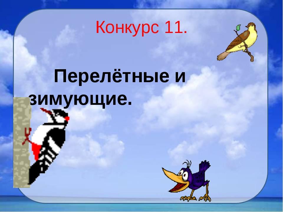 Конкурс 11. Перелётные и зимующие.